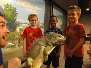 live animal show featuring a green iguana
