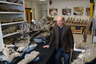 ken lacovara and dreadnoughtus