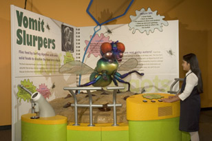 Animal Grossology Exhibit