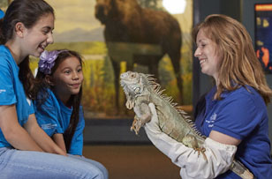 3 girls and iguana. By Jeff Fusco