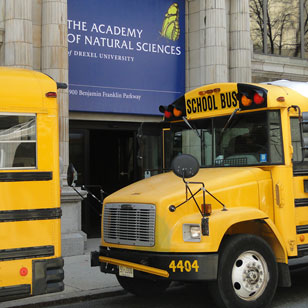 school buses parked next to the Academy