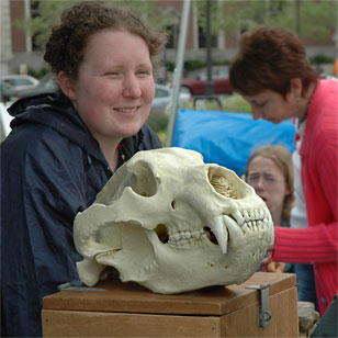 Academy teacher-naturalist with a lion skull at an outdoor fair