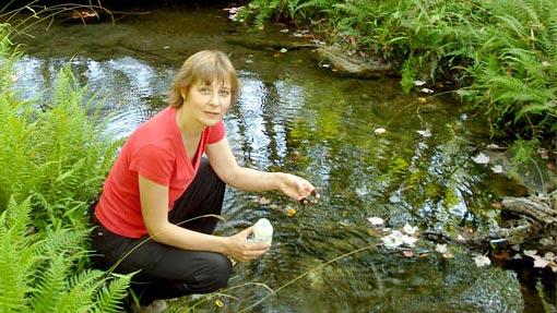 scientist collecting diatoms in a small stream