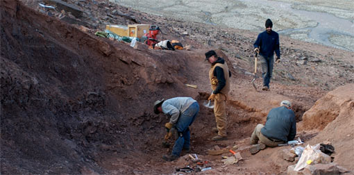 photo of paleontological dig