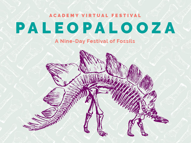 paleopalooza graphic with stegosaur