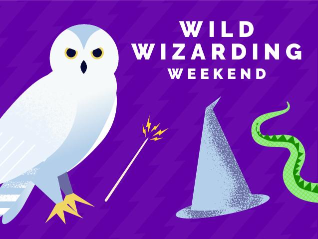 wild wizarding weekend
