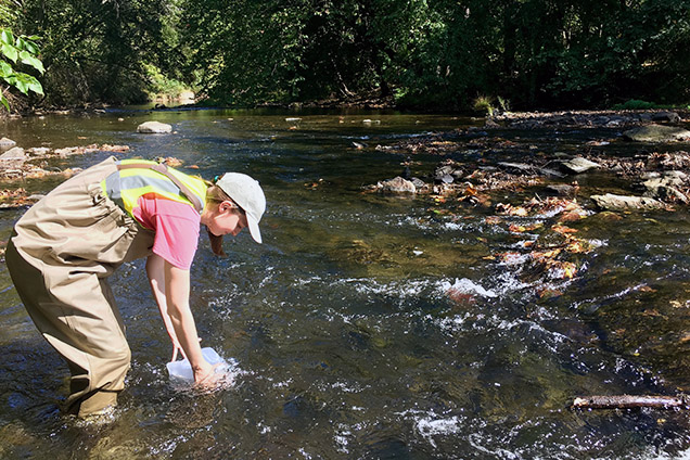 scientist samples water from stream