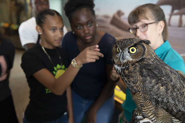 educator with owl