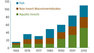chart showing fish and invertebrate species richness over time