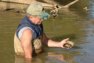 Ray Bouchard in the Sabine River with freshwater mussels