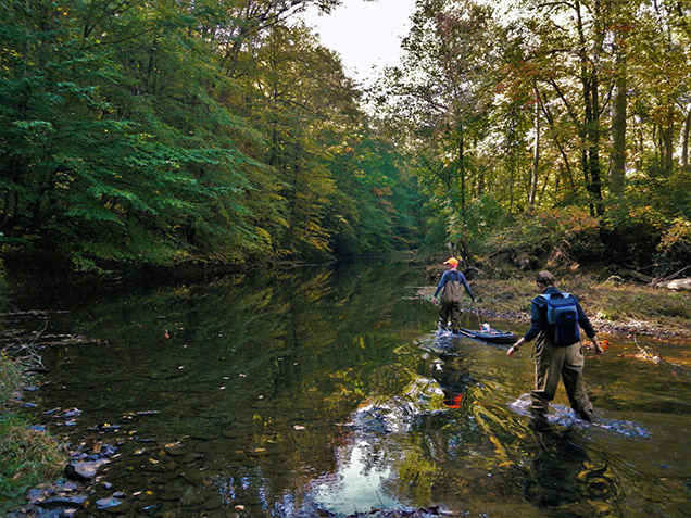 scientists walk through stream with equipment