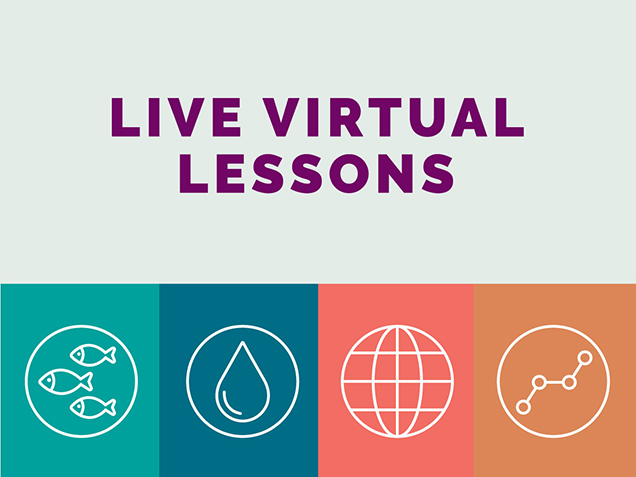 A graphic with three fish, a raindrop, a globe, and with a chemical bond with the text 'Virtual Lesson Activities'