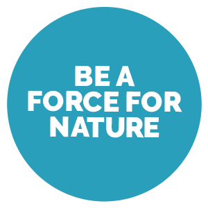 A teal circle with the text 'A Force for Nature'